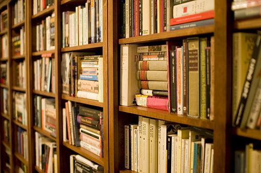 512px-Bookshelf